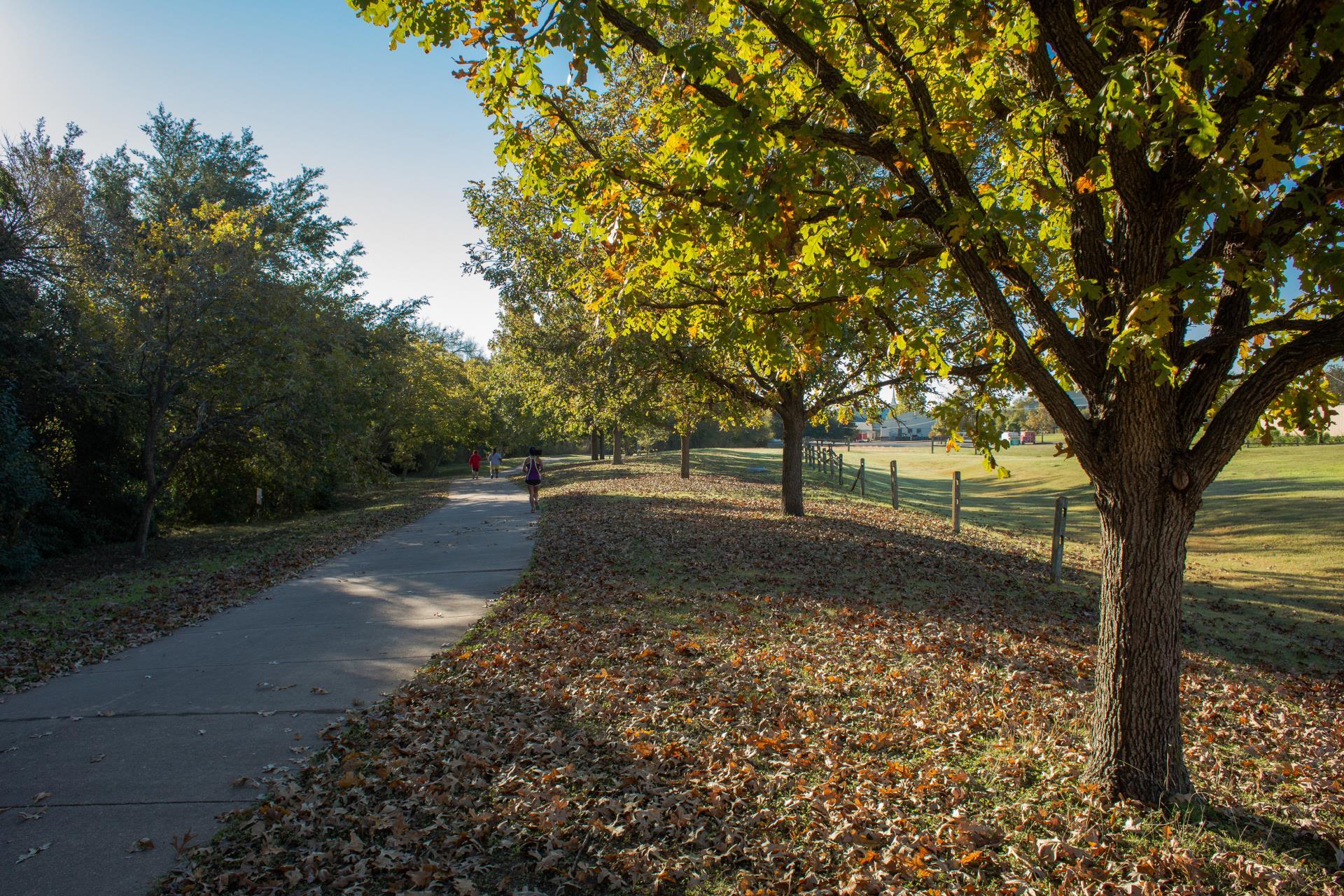 Pfluger Park Trails
